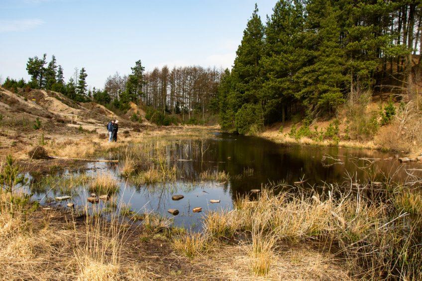 Skovtur i Momhøje