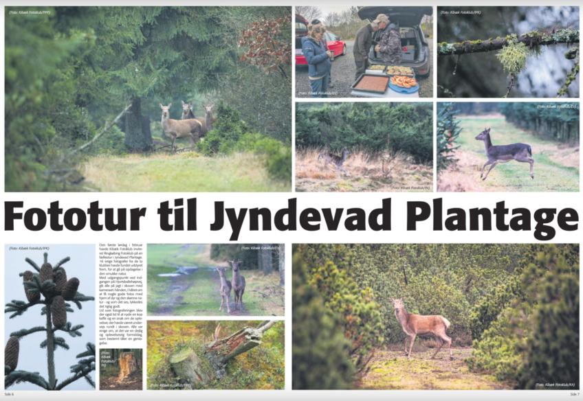Fælles fototur i avisen